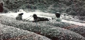 farmsendai350